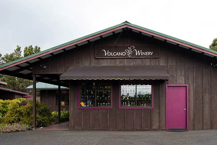 Volcano Winery, the southernmost winery in the U.S.
